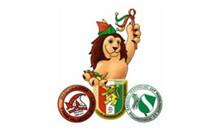 Komitee Braunschweiger Karneval g GmbH